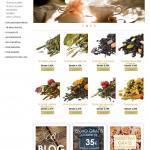 Diseño web tienda on-line de Belltier