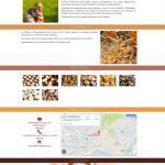 Rediseño web One-Page Champis Ruiz